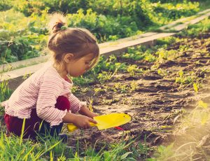 Belonging, Being and Becoming – The Early Years Learning Framework for Australia